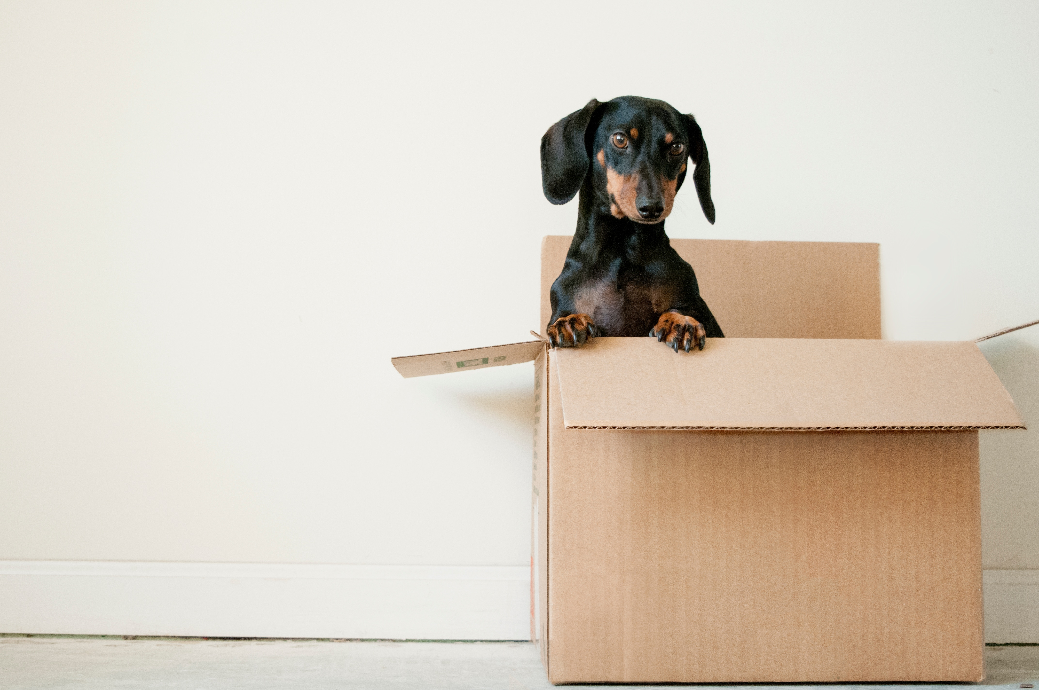 Homeowners –Should You Relocate For A New Job?